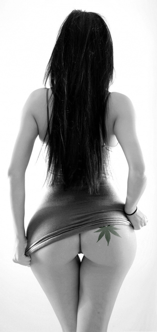 cannabasses-1